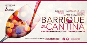 Barrique in Cantina